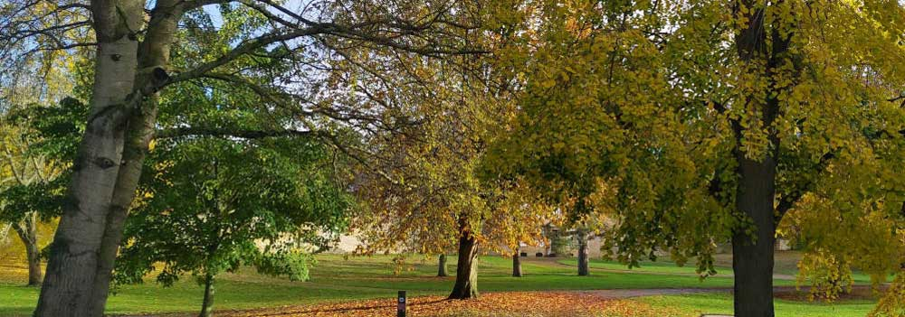 The Manor Park grounds at Great Linford