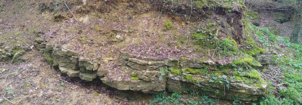 The Stone Quarry at Great Linford